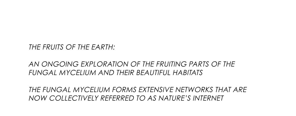 The-Fruits-of-the-Earth-copy.jpg